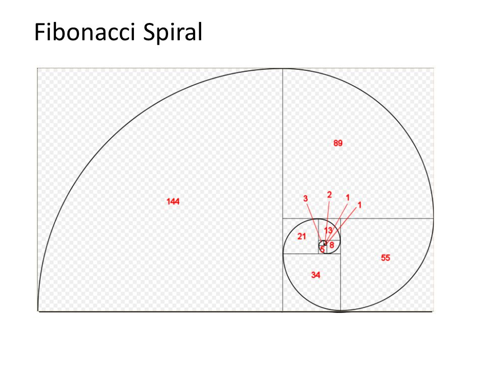 Fibonacci Sequence Demonstrates the idea that each stage of natural growth or development refers to its prior state in order to take its next evolutionary step This connects to the idea of Sacred Geometry