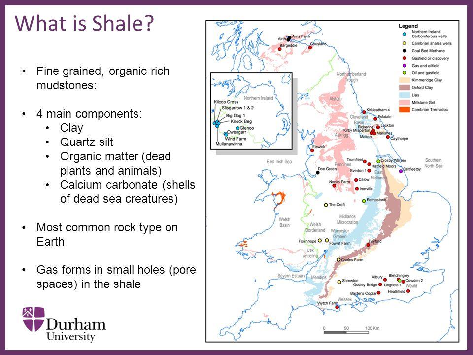 ∂ What is Shale? www.oceanexplorer.noaa.gov Fine grained, organic rich mudstones: 4 main components: Clay Quartz silt Organic matter (dead plants and