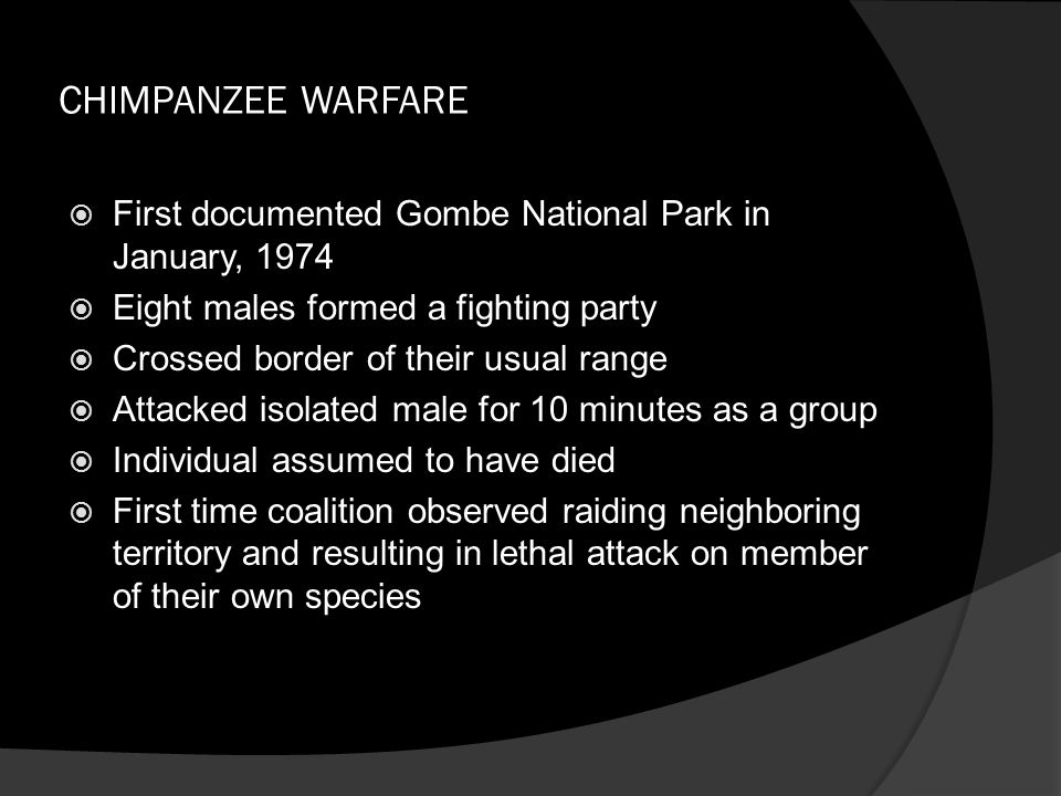 CHIMPANZEE WARFARE  First documented Gombe National Park in January, 1974  Eight males formed a fighting party  Crossed border of their usual range