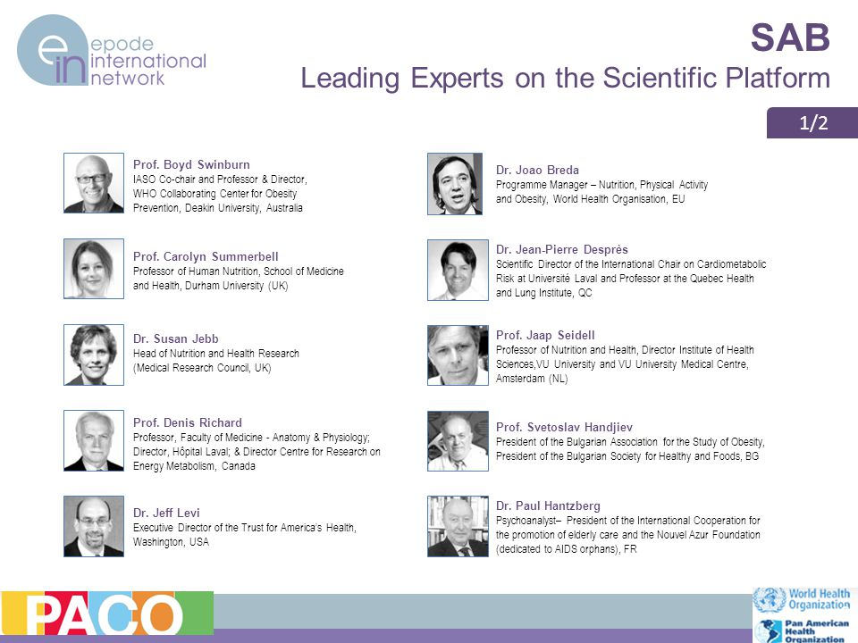 SAB Leading Experts on the Scientific Platform 6 Prof.