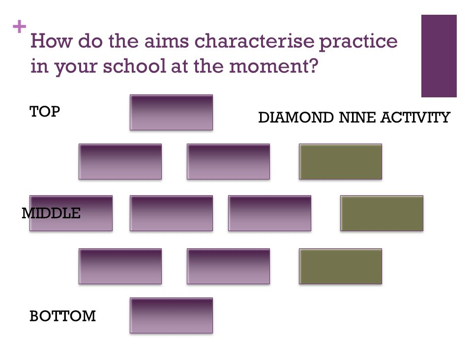+ How do the aims characterise practice in your school at the moment.