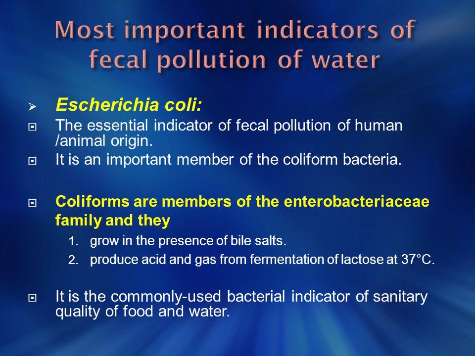  Water  Milk Air