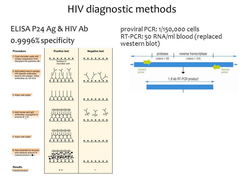 proviral PCR: 1/150,000 cells RT-PCR: 50 RNA/ml blood (replaced western blot) HIV diagnostic methods ELISA P24 Ag & HIV Ab 0.9996% specificity