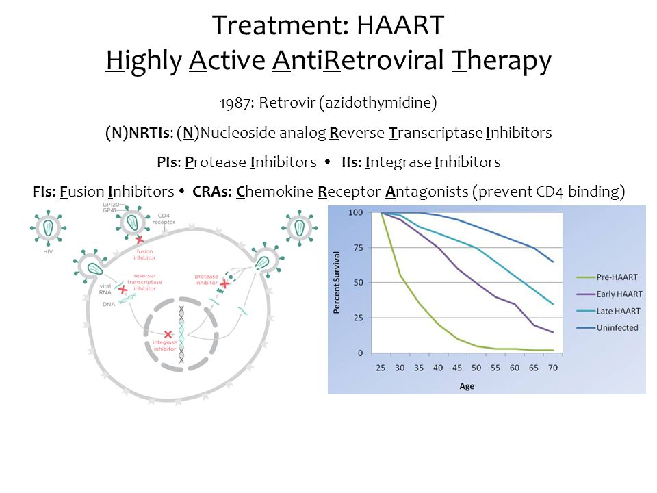 Treatment: HAART Highly Active AntiRetroviral Therapy 1987: Retrovir (azidothymidine) (N)NRTIs: (N)Nucleoside analog Reverse Transcriptase Inhibitors