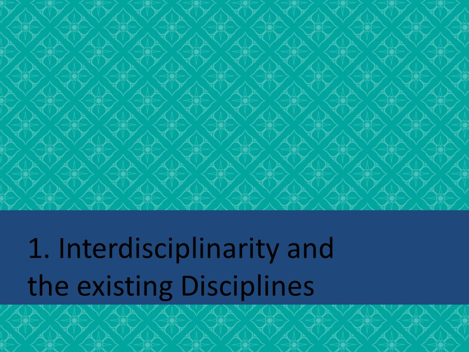 1. Interdisciplinarity and the existing Disciplines