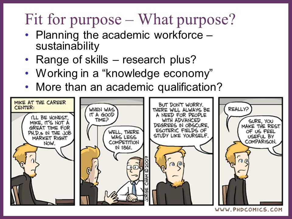 """∂ Fit for purpose – What purpose? Planning the academic workforce – sustainability Range of skills – research plus? Working in a """"knowledge economy"""" M"""