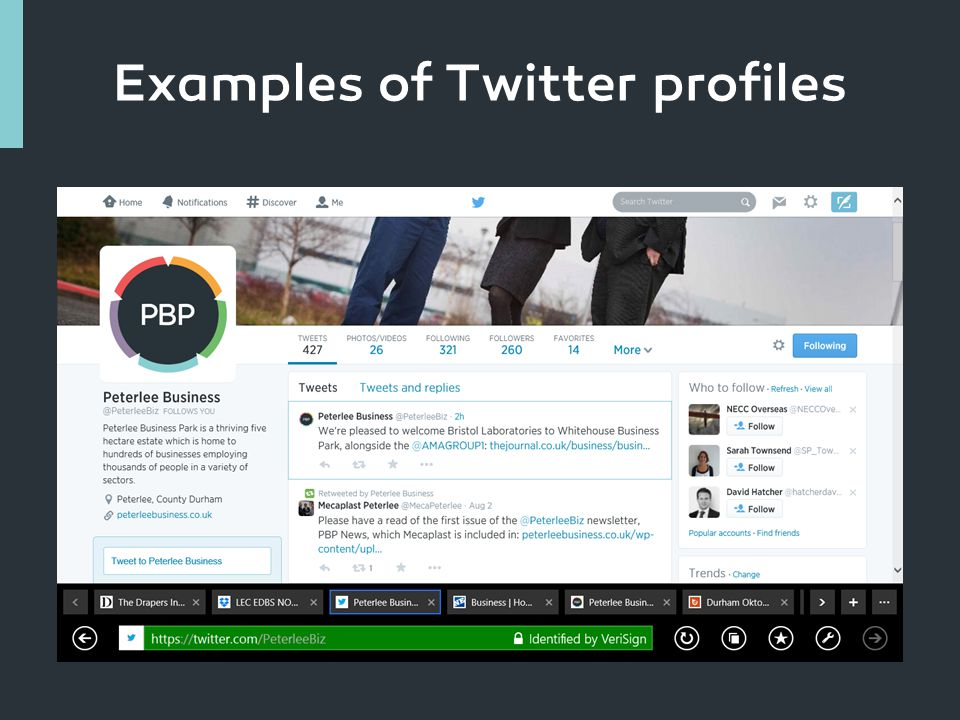 Examples of Twitter profiles
