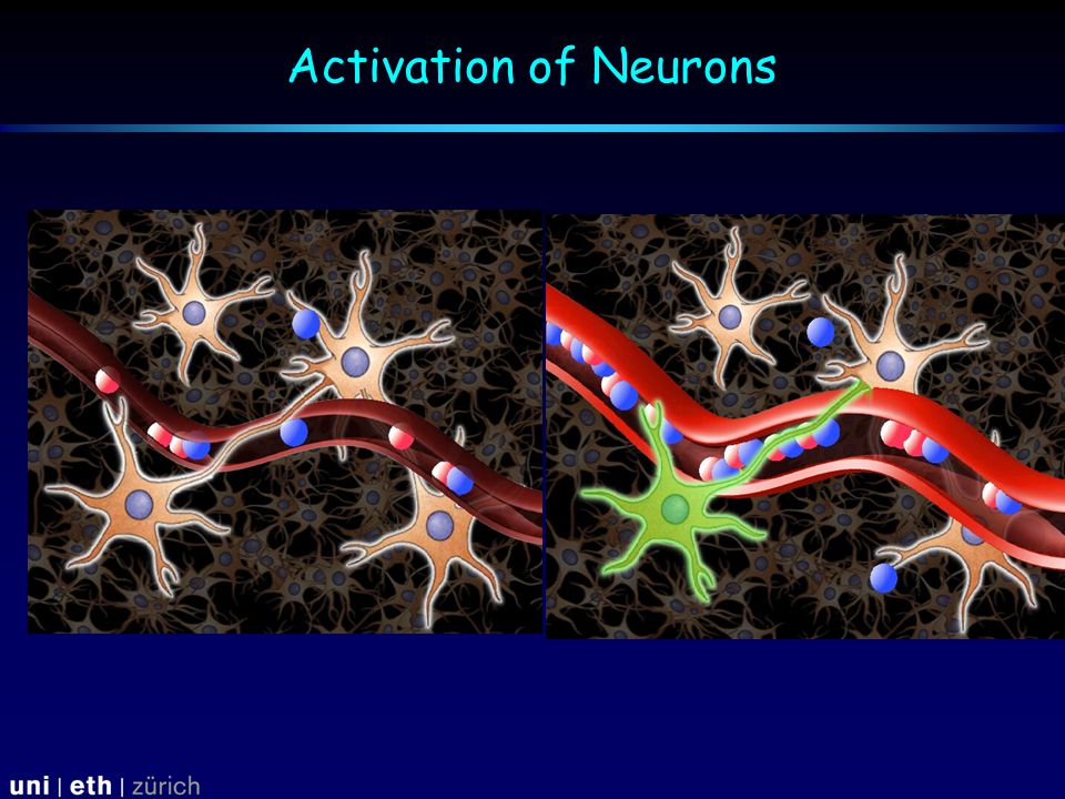 Activation of Neurons
