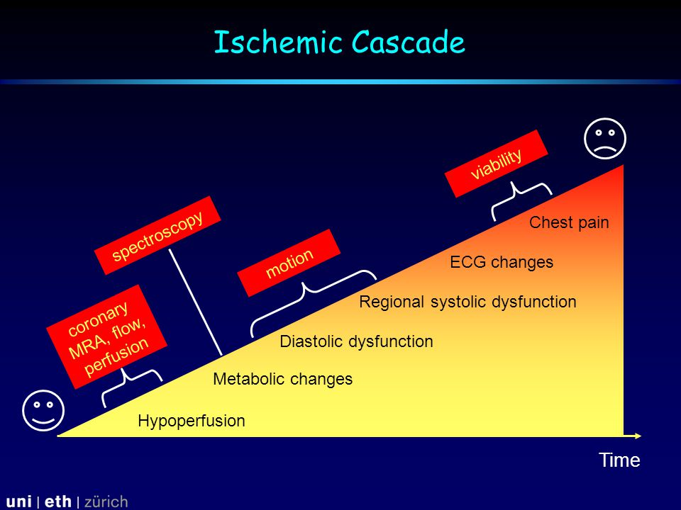 Ischemic Cascade Hypoperfusion Metabolic changes Diastolic dysfunction Regional systolic dysfunction ECG  changes Chest  pain Time spectroscopy coronary MRA, flow, perfusion motion viability