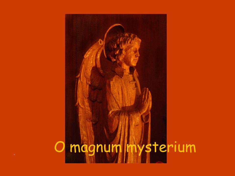 O magnum mysterium, et admirabile sacramentum, ut animalia viderent Dominum natum, jacentem in præsepio.