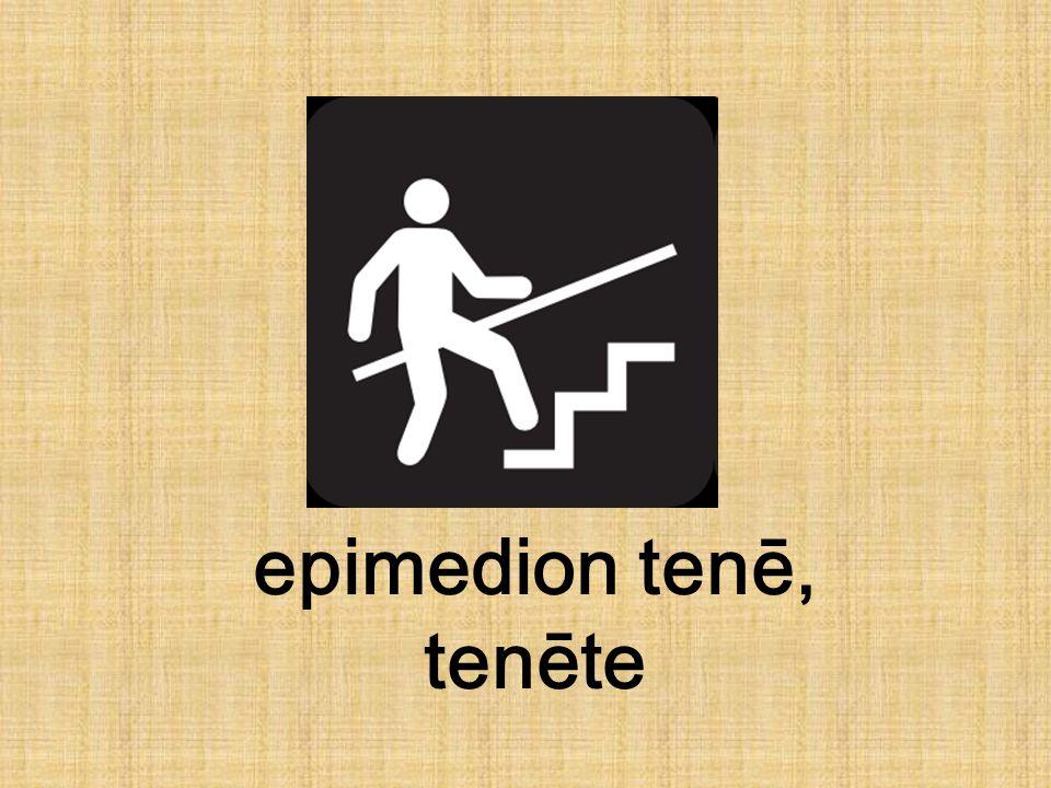 epimedion tenē, tenēte