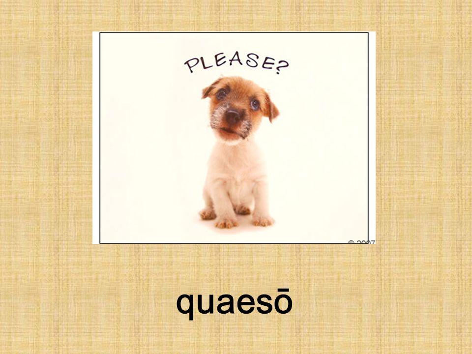 quaesō
