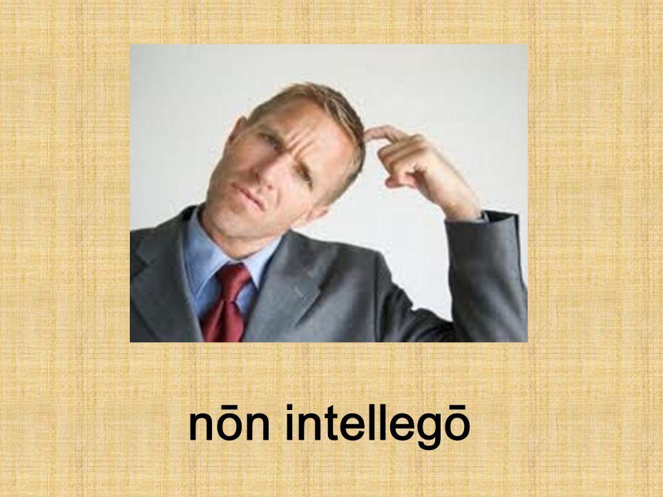 nōn intellegō