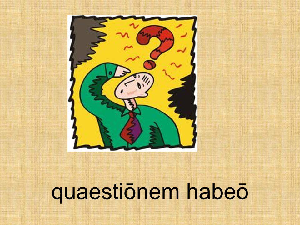 quaestiōnem habeō