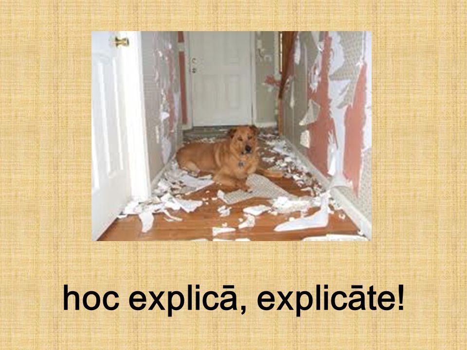 hoc explicā, explicāte!