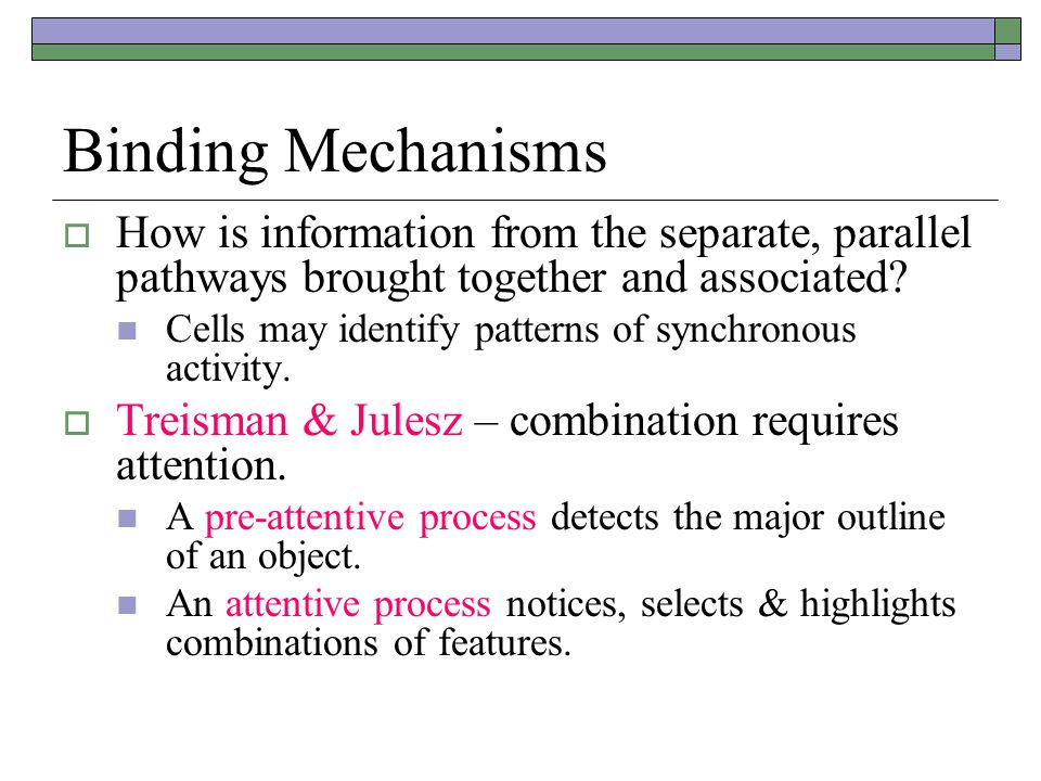 Binding Mechanisms  How is information from the separate, parallel pathways brought together and associated.