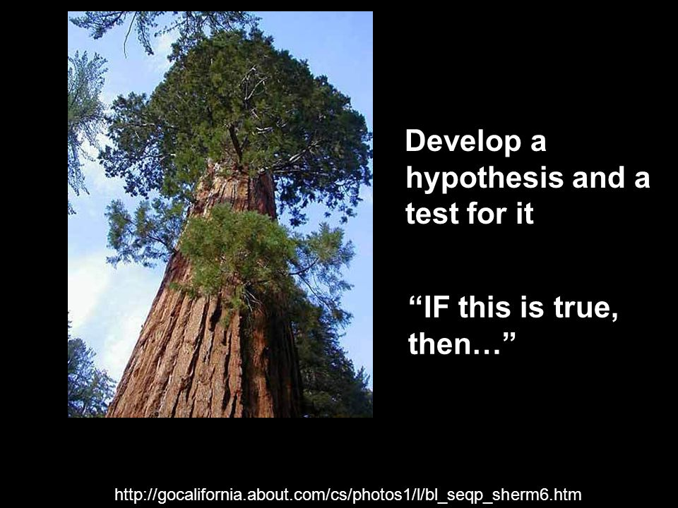 "http://gocalifornia.about.com/cs/photos1/l/bl_seqp_sherm6.htm Develop a hypothesis and a test for it ""IF this is true, then…"""