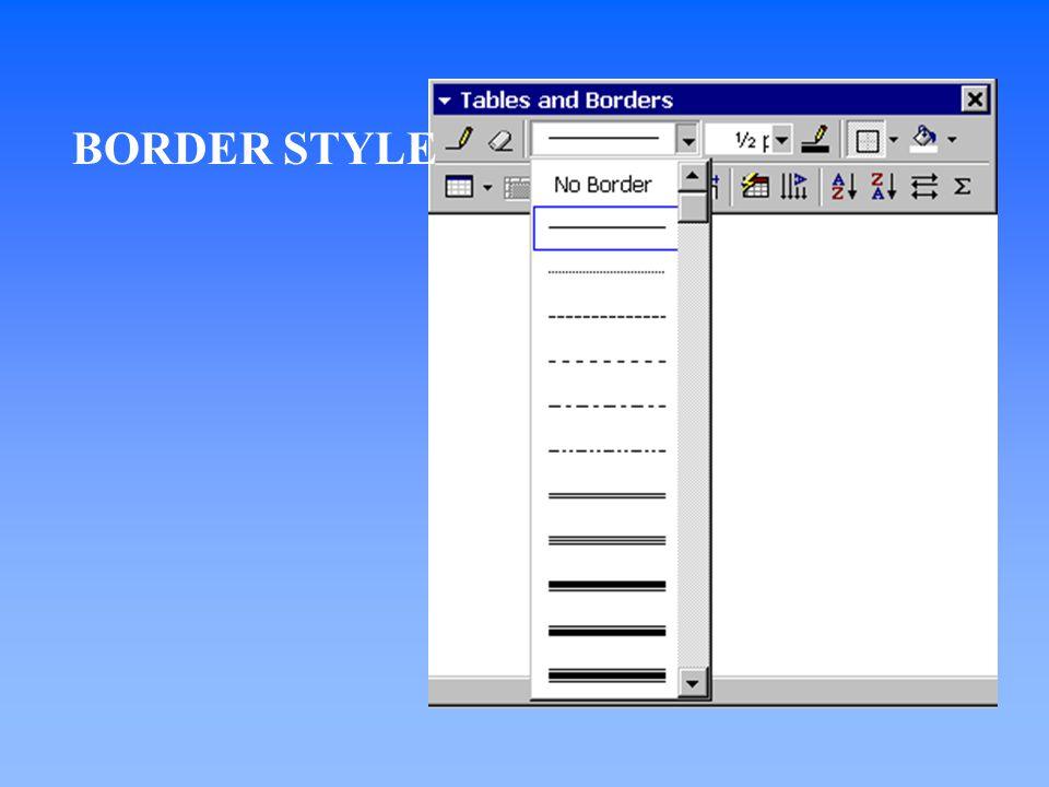 BORDER STYLE