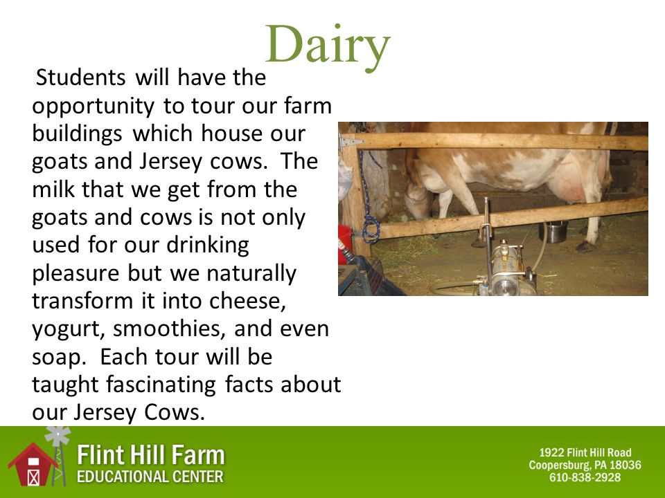 Dairy Students will have the opportunity to tour our farm buildings which house our goats and Jersey cows.