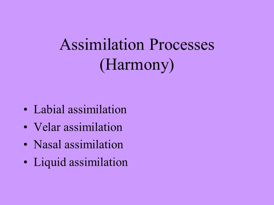 Assimilation Processes (Harmony) Labial assimilation Velar assimilation Nasal assimilation Liquid assimilation