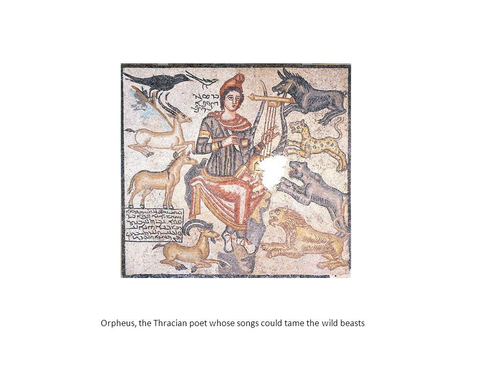 Orpheus, the Thracian poet whose songs could tame the wild beasts