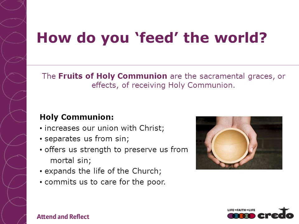 How do you 'feed' the world? The Fruits of Holy Communion are the sacramental graces, or effects, of receiving Holy Communion. Holy Communion: increas
