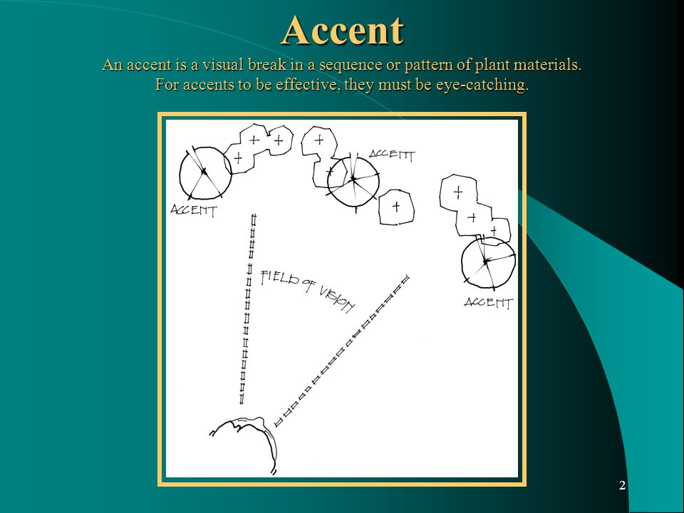 2 Accent An accent is a visual break in a sequence or pattern of plant materials.