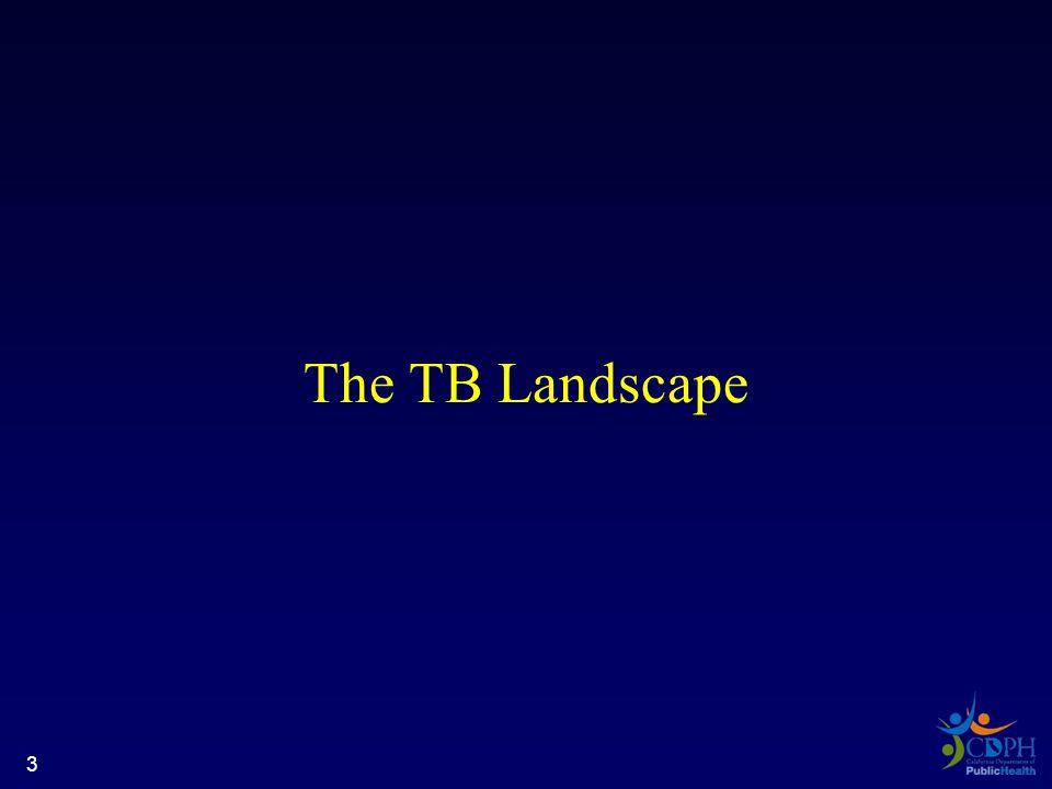 The TB Landscape 3