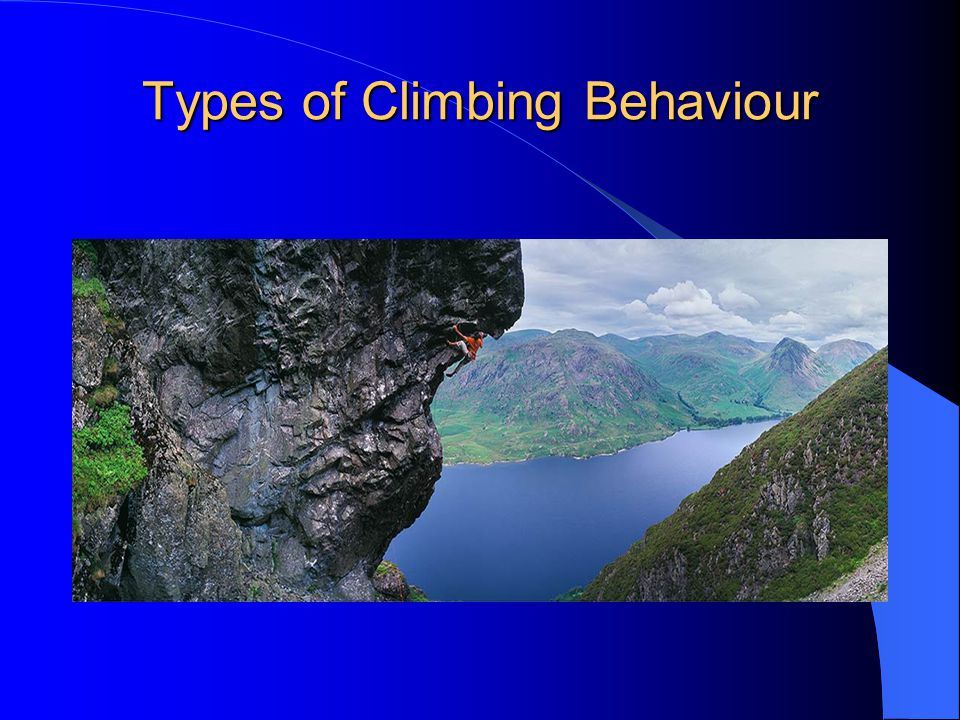 Types of Climbing Behaviour