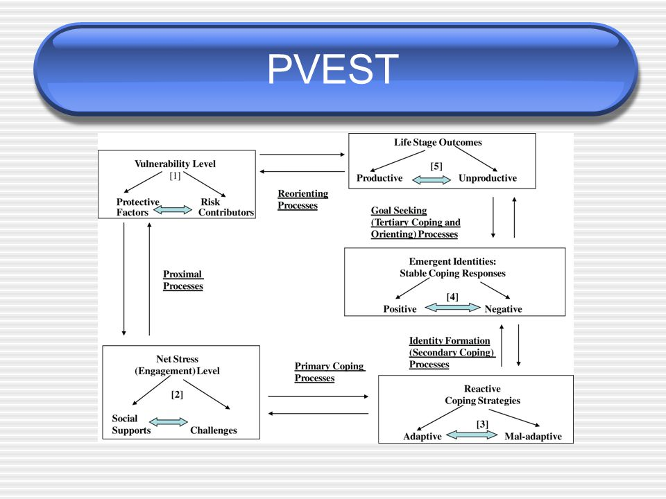 PVEST