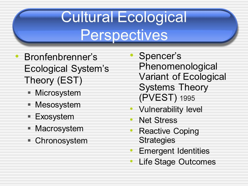 Cultural Ecological Perspectives Bronfenbrenner's Ecological System's Theory (EST)  Microsystem  Mesosystem  Exosystem  Macrosystem  Chronosystem Spencer's Phenomenological Variant of Ecological Systems Theory (PVEST) 1995 Vulnerability level Net Stress Reactive Coping Strategies Emergent Identities Life Stage Outcomes