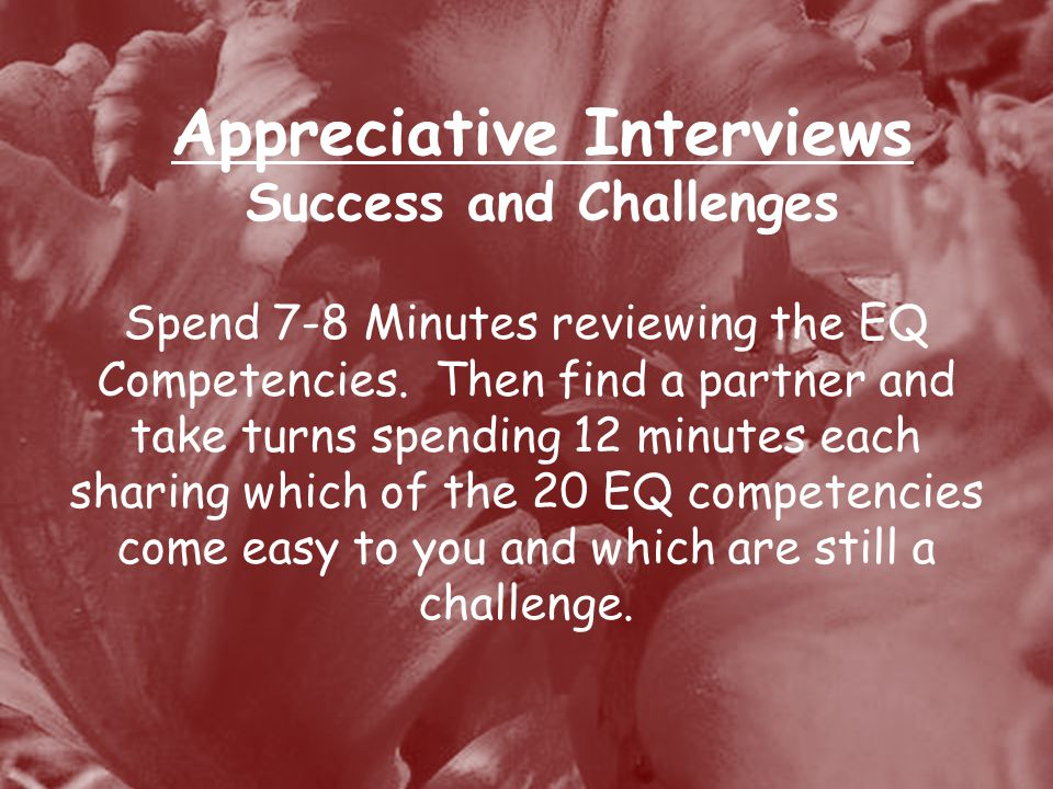 Appreciative Interviews Success and Challenges Spend 7-8 Minutes reviewing the EQ Competencies.
