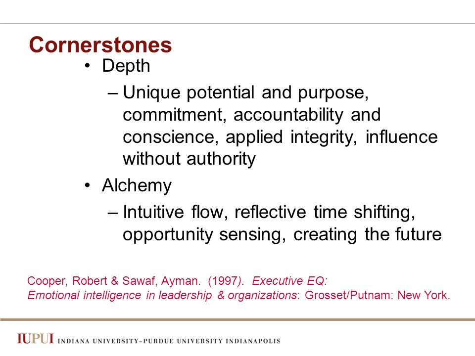Cornerstones Depth –Unique potential and purpose, commitment, accountability and conscience, applied integrity, influence without authority Alchemy –Intuitive flow, reflective time shifting, opportunity sensing, creating the future Cooper, Robert & Sawaf, Ayman.