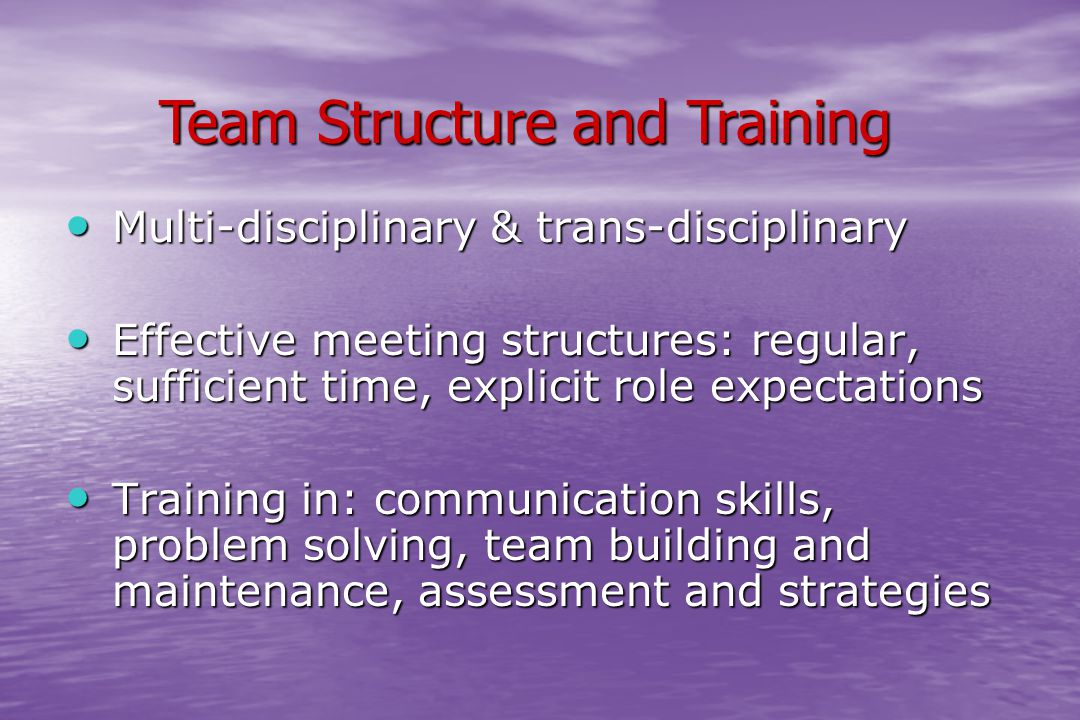 Multi-disciplinary & trans-disciplinary Multi-disciplinary & trans-disciplinary Effective meeting structures: regular, sufficient time, explicit role expectations Effective meeting structures: regular, sufficient time, explicit role expectations Training in: communication skills, problem solving, team building and maintenance, assessment and strategies Training in: communication skills, problem solving, team building and maintenance, assessment and strategies Team Structure and Training