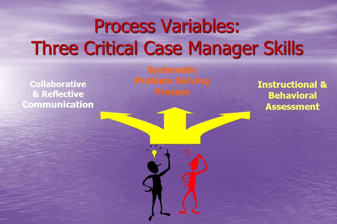 Process Variables: Three Critical Case Manager Skills Collaborative & Reflective Communication Systematic Problem Solving Process Instructional & Beha