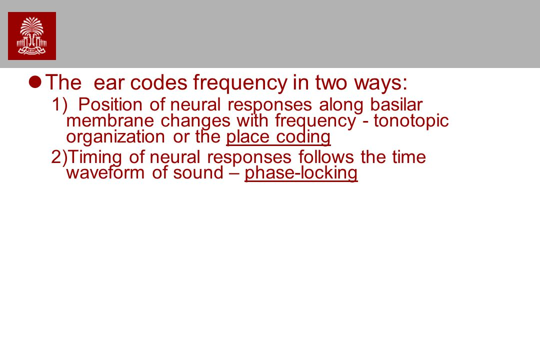 The ear codes frequency in two ways: 1) Position of neural responses along basilar membrane changes with frequency - tonotopic organization or the place coding 2)Timing of neural responses follows the time waveform of sound – phase-locking