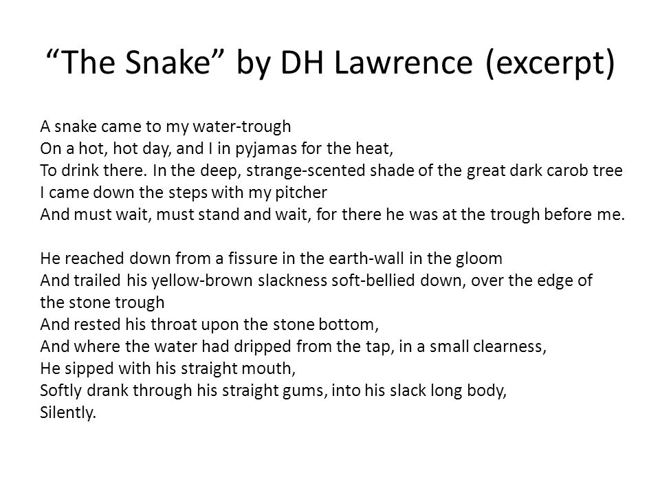 The Snake by DH Lawrence (excerpt) A snake came to my water-trough On a hot, hot day, and I in pyjamas for the heat, To drink there.