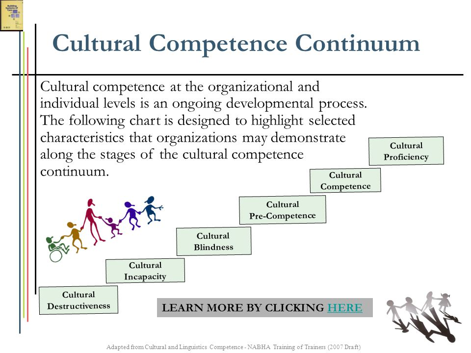 Adapted from Cultural and Linguistics Competence - NABHA Training of Trainers (2007 Draft) Cultural Destructiveness Cultural Incapacity Cultural Blind