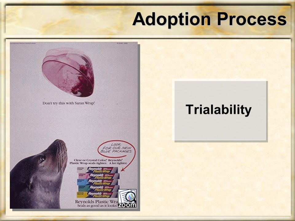 Adoption Process Trialability