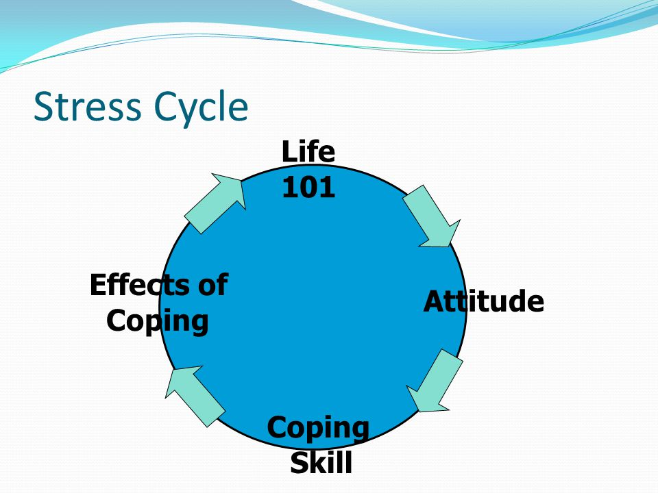 Stress Cycle Life 101 Attitude Coping Skill Effects of Coping
