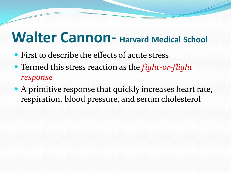 Walter Cannon- Harvard Medical School First to describe the effects of acute stress Termed this stress reaction as the fight-or-flight response A prim