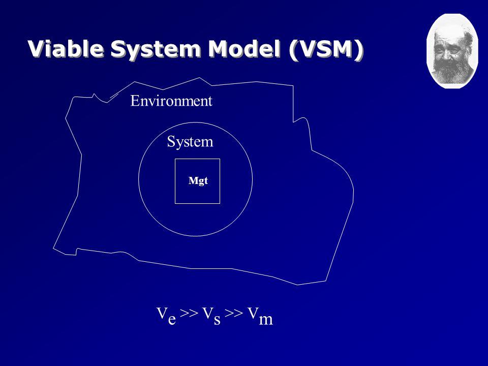 Environment System Mgt V e >> V s >> V m Viable System Model (VSM)