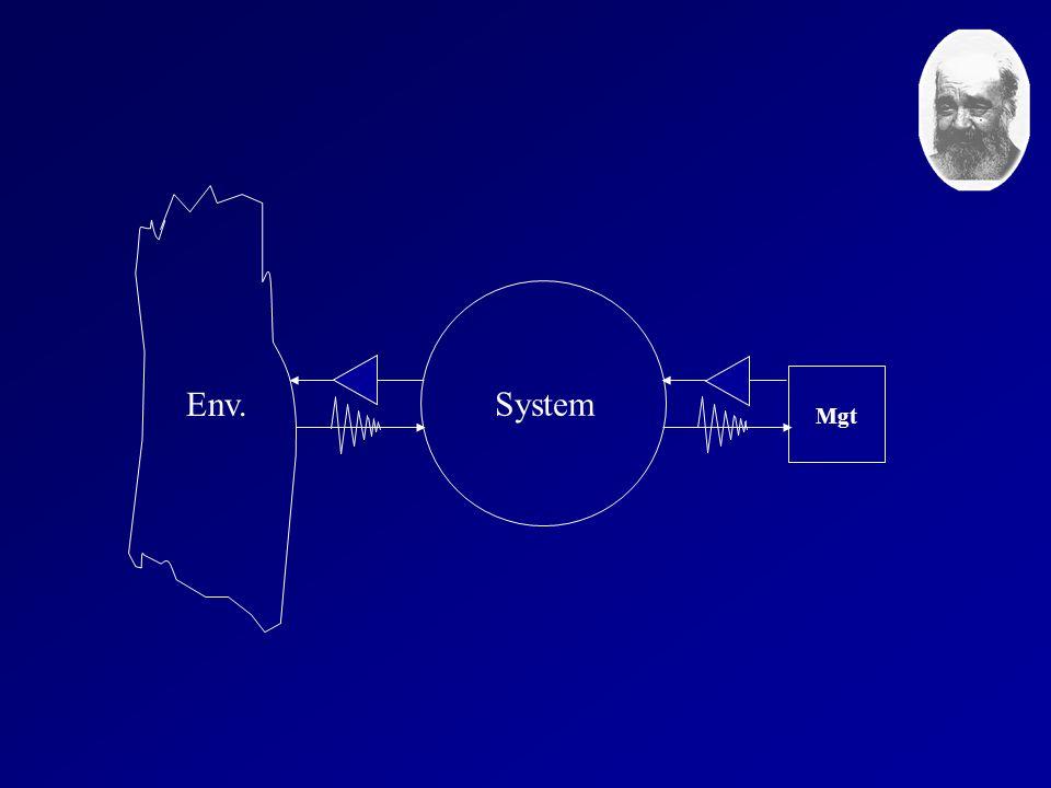Env. System Mgt