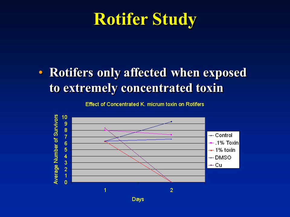 Rotifer Study Rotifers only affected when exposed to extremely concentrated toxin