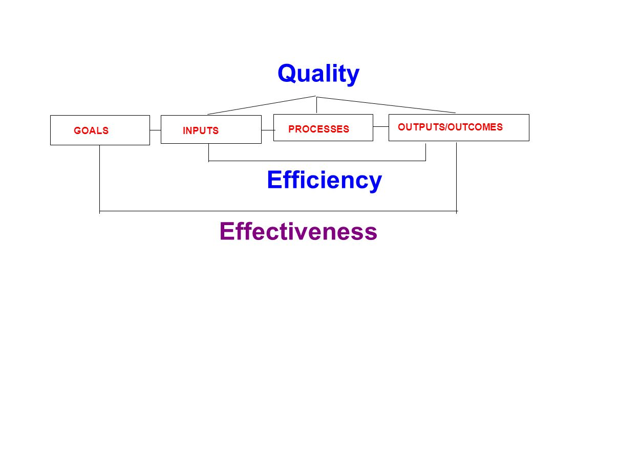 PROCESSES INPUTS OUTPUTS/OUTCOMES GOALS Effectiveness Efficiency Quality