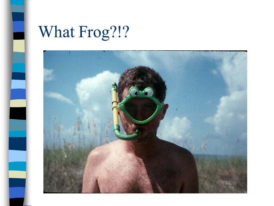 What Frog !