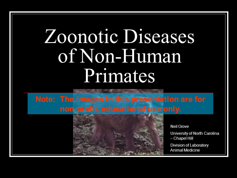 Zoonotic Diseases of Non-Human Primates Neil Grove University of North Carolina – Chapel Hill Division of Laboratory Animal Medicine Note: The images