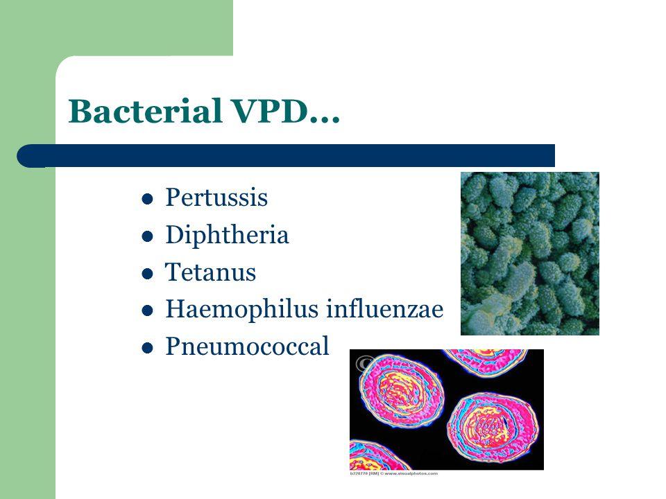 Bacterial VPD... Pertussis Diphtheria Tetanus Haemophilus influenzae Pneumococcal