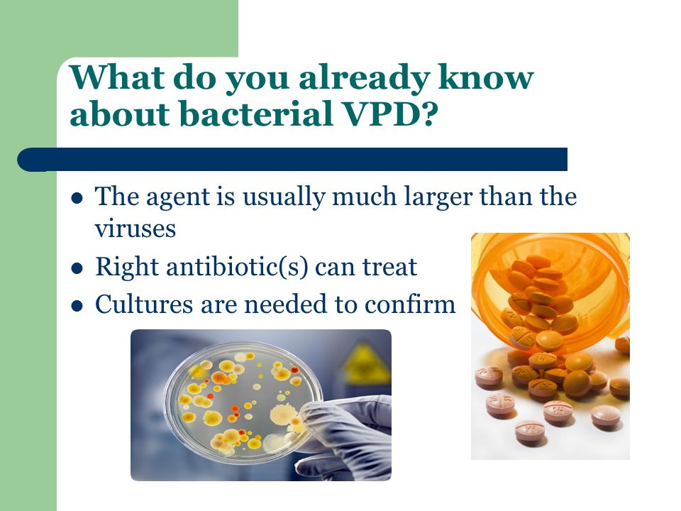 What do you already know about bacterial VPD.