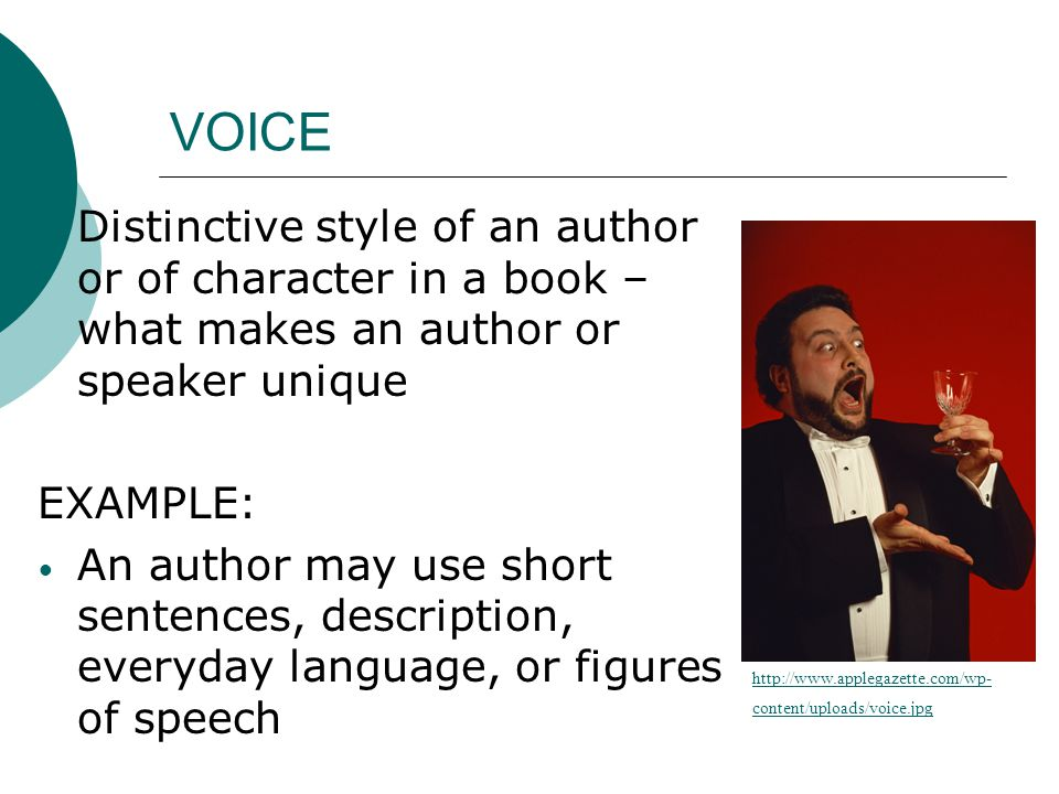 VOICE  Distinctive style of an author or of character in a book – what makes an author or speaker unique EXAMPLE: An author may use short sentences,